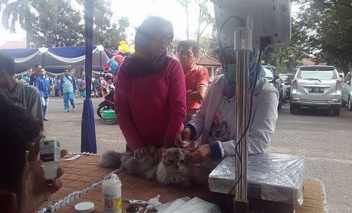 Kali Ketiga, Pet Festival Kembali Digelar Bulan Mei 2017