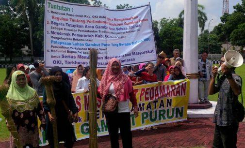 Solidaritas Masyarakat Pedamaran Tuntut Pemkab OKI Keluarkan Regulasi Perlindungan Ekosistem Gambut Purun