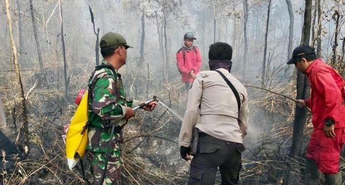 Satgas Karhutbunla Sukses Padamkan Api di Wilayah OI dan OKI
