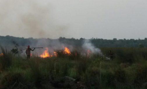 Dua Helly BNPB Dan Satgas Terpadu Dikerahkan Padamkan Api di OKI