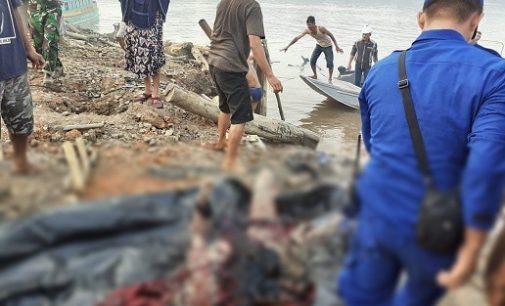 Jukung MS Safira Meledak dan Terbakar, Dua Penumpang Tewas
