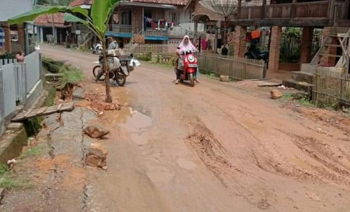 Resah Jalan Rusak, Warga Desa Pagar Raya Tanam Pisang